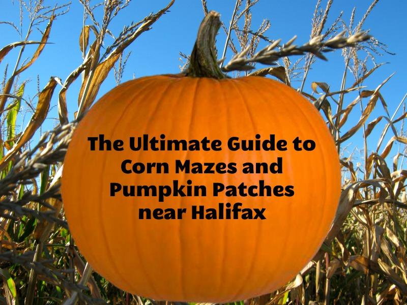 La última guía de laberintos de maíz y parches de calabaza cerca de Halifax por Family Fun Halifax